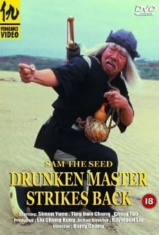Pícaro y señor del Kung-Fu online