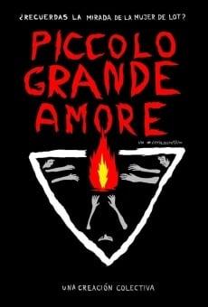 Ver película Piccolo Grande Amore