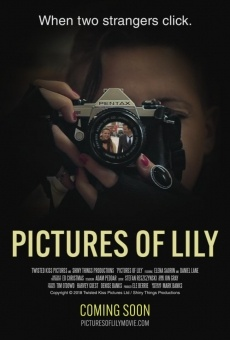 Ver película Pictures of Lily