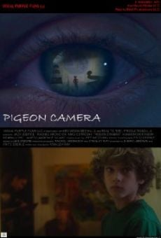 Pigeon Camera on-line gratuito