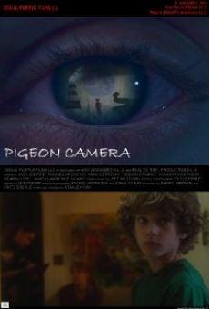 Watch Pigeon Camera online stream