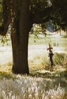 Pine Flat online