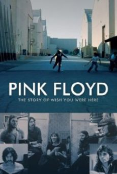 Watch Pink Floyd: The Story of Wish You Were Here online stream