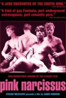 Pink Narcissus on-line gratuito
