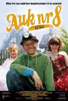 Ver película Pit No. 8