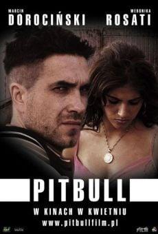 Pitbull on-line gratuito