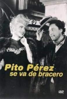 Ver película Pito Pérez se va de bracero