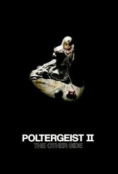 Ver película Poltergeist 2: El otro lado