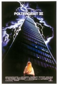 Ver película Poltergeist III
