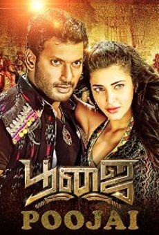 Ver película Poojai