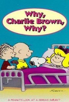 Ver película ¿Por qué, Charlie Brown, por qué?