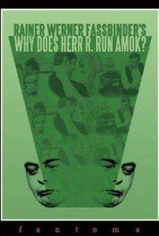 Ver película ¿Por qué le da el ataque de locura al señor R.?