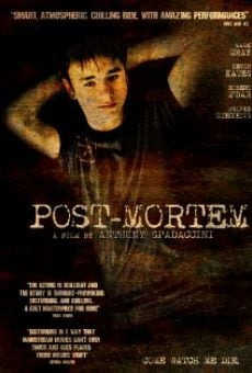 Post-Mortem on-line gratuito