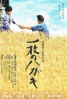 Ichimai no hagaki online