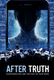 After Truth: Disinformation and the Cost of Fake News en ligne gratuit