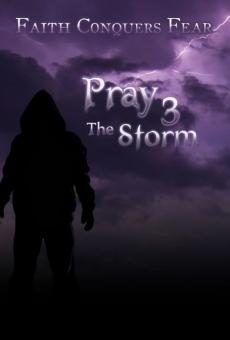 Ver película Pray 3D: La Tormenta