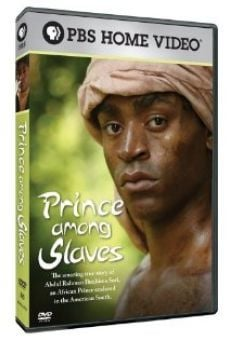Prince Among Slaves gratis