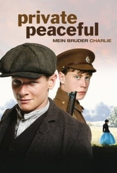 Ver película Private Peaceful