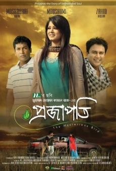 Ver película Projapoti
