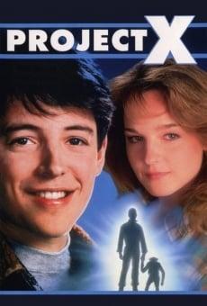 Ver película Proyecto X