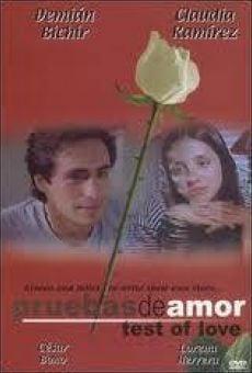 Ver película Pruebas de amor