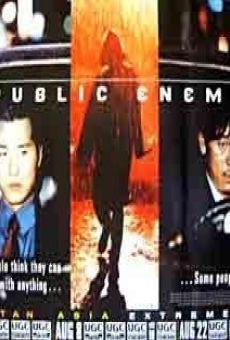 Ver película Public Enemy