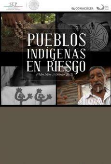 Pueblos indígenas en riesgo on-line gratuito