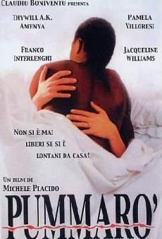 Ver película Pummarò
