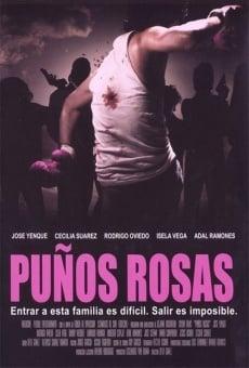 Ver película Puños rosas