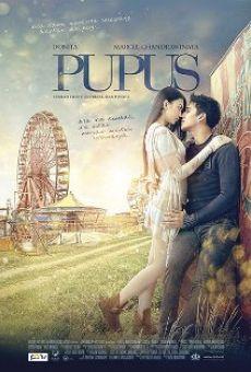 Ver película Pupus