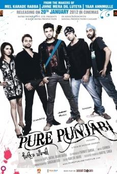 Ver película Puro Punjabi