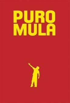 Ver película Puro mula
