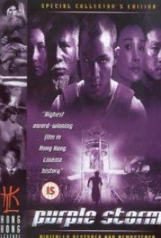 Ver película Purple Storm
