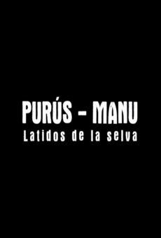 Ver película Purús-Manu: Latidos de la selva