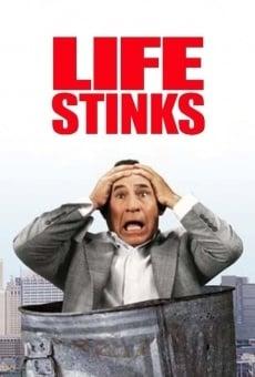 Ver película Qué asco de vida