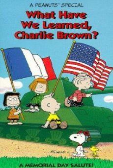 Ver película ¿Qué hemos aprendido, Charlie Brown?