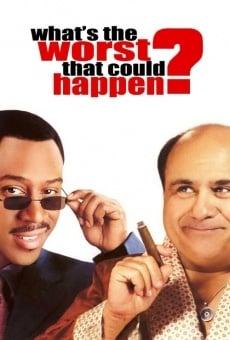 Ver película Qué más podría pasar?