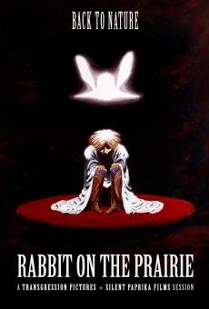 Ver película Rabbit on the Prairie