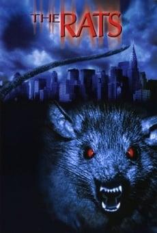 Ver película Ratas en Manhattan