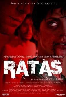 Ver película Ratas