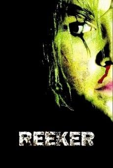 Reeker Stream