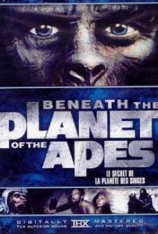 Ver película Regreso al planeta de los simios