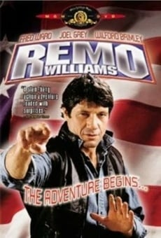 Remo Williams: The Adventure Begins online kostenlos