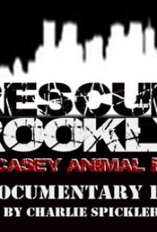 Rescue! Brooklyn on-line gratuito