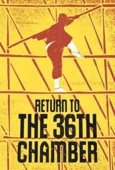 Ver película Retorno a Shaolin