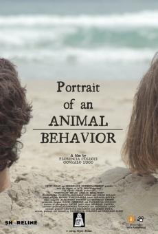 Ver película Retrato de un comportamiento animal