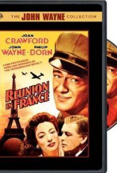 Ver película Reunión en Francia
