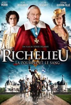 Ver película Richelieu, la pourpre et le sang