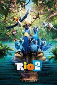 Ver película Río 2