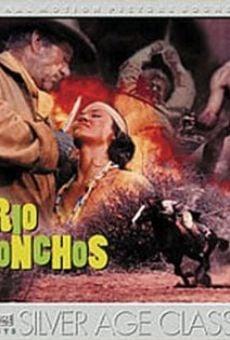Ver película Río Conchos